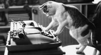 cropped-cropped-cropped-cat-writer11.jpg